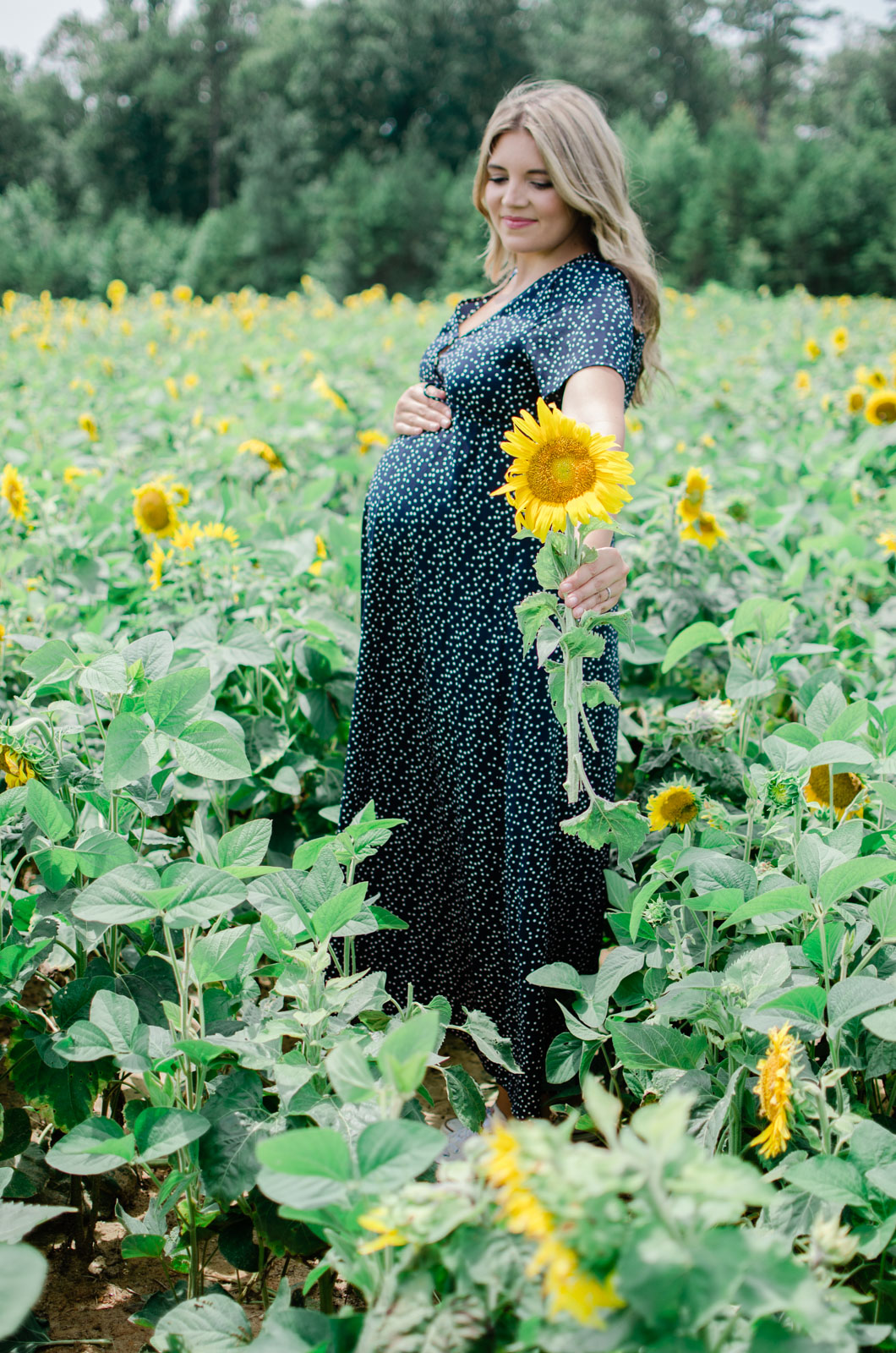sunflower maternity session - summer maternity photos 36 weeks pregnant | bylaurenm.com