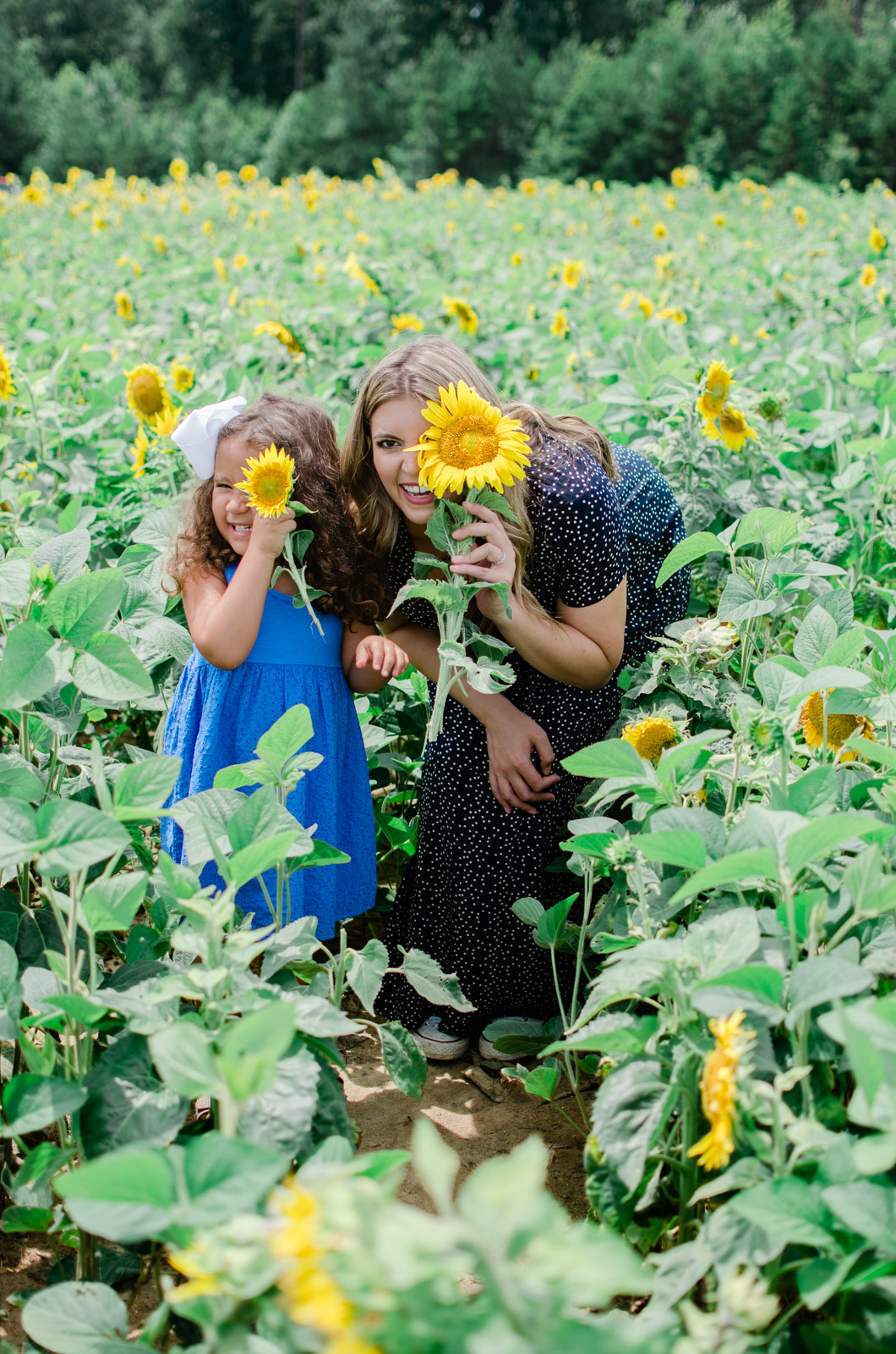 sunflower family maternity session | bylaurenm.com