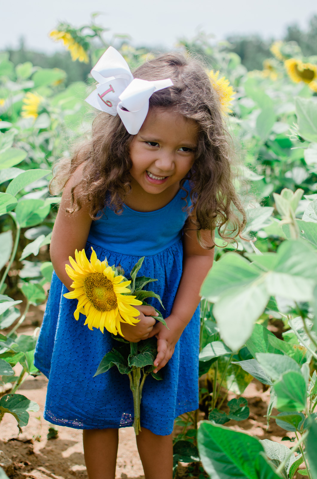 sunflower family photos - sunflower photo session | bylaurenm.com
